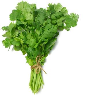 img-herbs-2